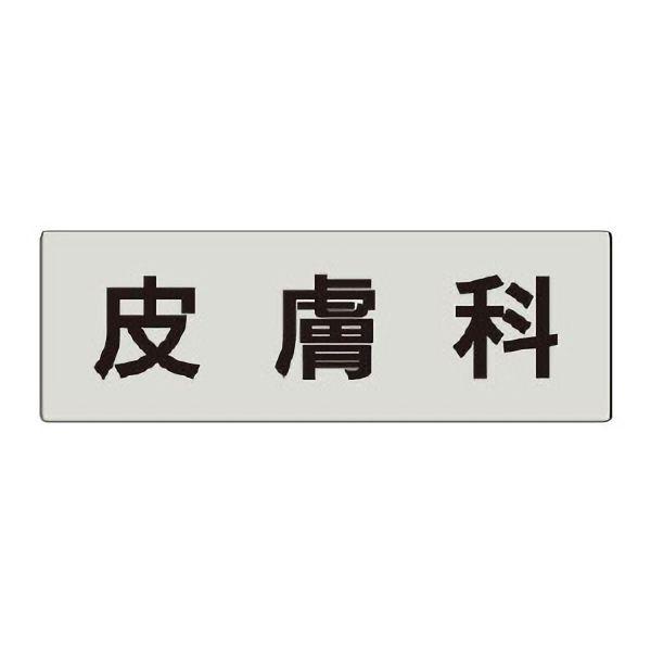 室名表示板 RS5−102 皮膚科 片面表示 文字入れ (グレー)