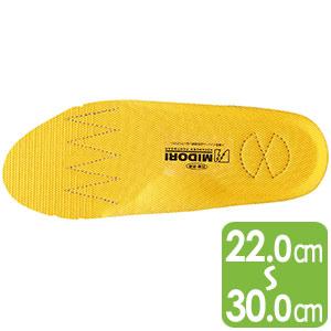 靴備品 EVA2層カップインソール静電