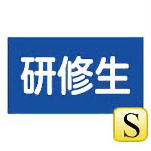 伸縮式刺繍腕章 GW−106(S) 研修生 139956