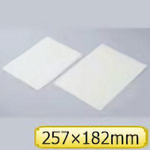 高輝度蓄光シート FLA−B5 361002