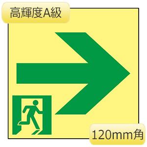 高輝度蓄光避難誘導標識 ASN961 120mm角 377961