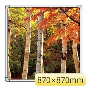 フォトパネル 900−54 木立