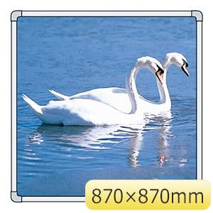 フォトパネル 900−85 白鳥